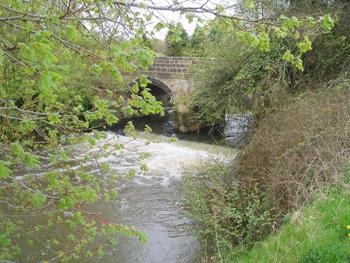 Avon River Weir