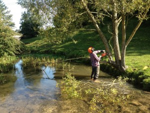 Hinging a willow tree to create a live flow deflector