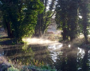 The River Marden by local resident Richard Loveday