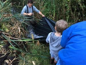 Fish rescue 3